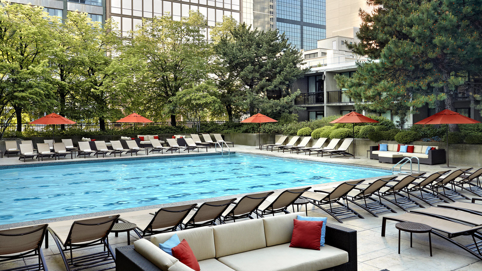 Indoor-Outdoor Heated Pool - Sheraton Centre Toronto Hotel